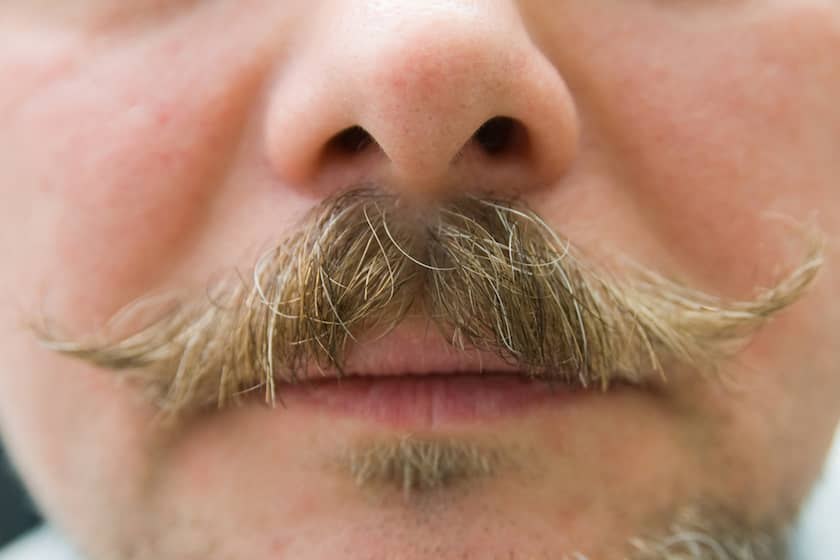 Best Mustache Waxes Reviews